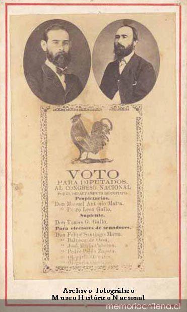 votogallo